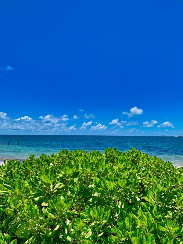 Winthropes-Beach