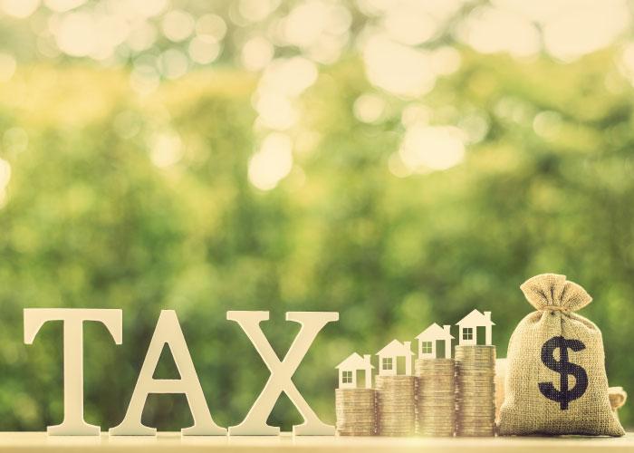 Taxes-antigua
