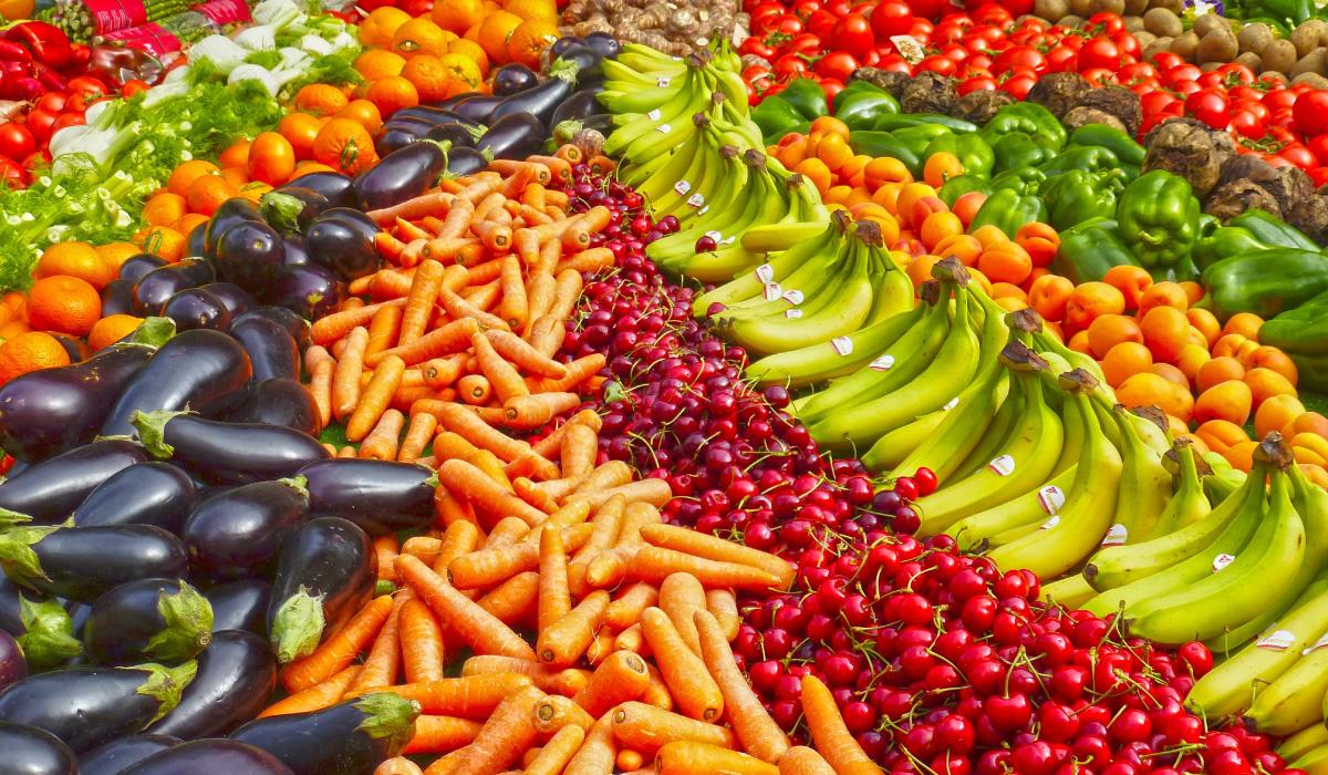 Investment in Antigua-Agriculture-caribbean