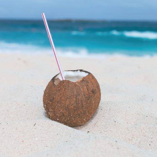 Darkwood-Beach-coconuts