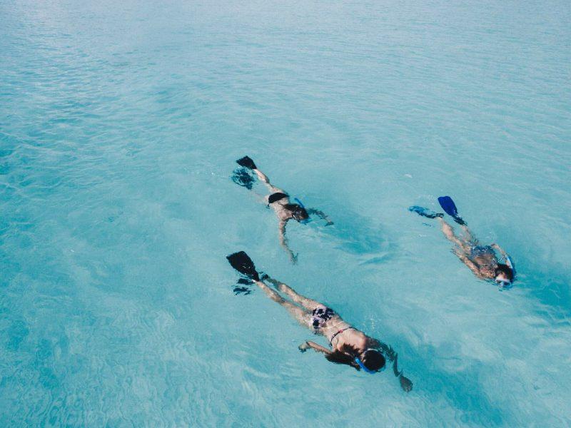snorkeling in Turners Beach